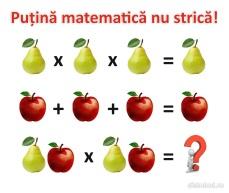 Putina mate 2